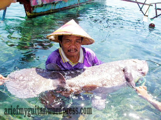 Ikan Purba